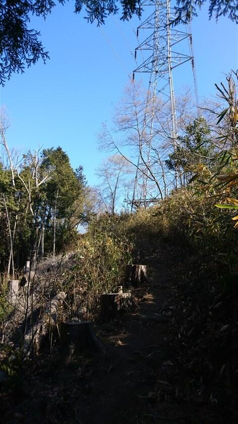 生駒縦走歩道を登る