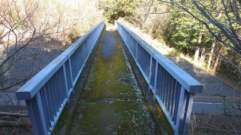 歩道橋には苔が生えており、このルートを利用する人が少ない感がある