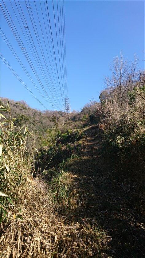 ほぼ電線に沿って、その下を登って行くルートになる