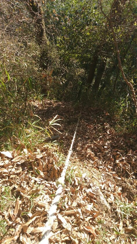 ロープを使って、「神宮寺道:C=来迎寺墓地ルート」に下る