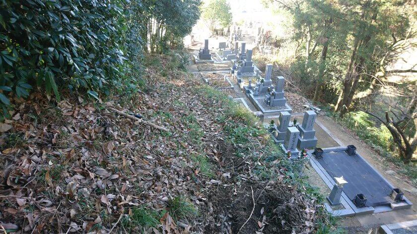 お墓の上の道に出る