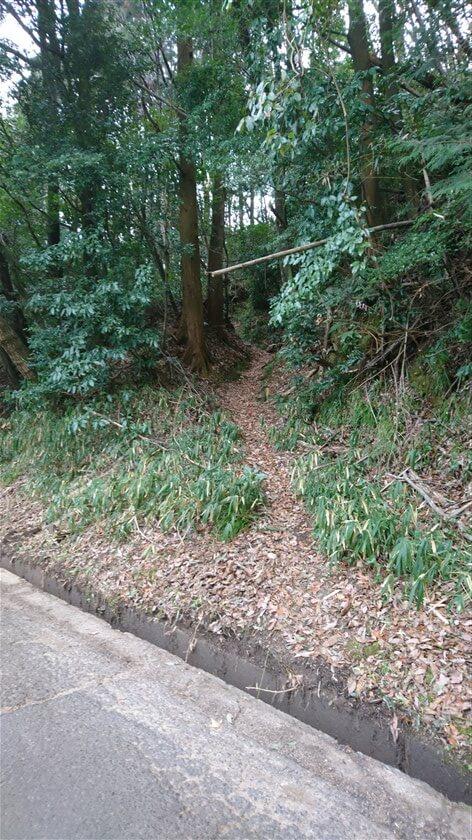 とっくりダム横の道から、のどか村への道の入り口を見た様子