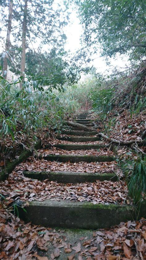 信貴フラワーロードに架かる歩道橋への登りの階段