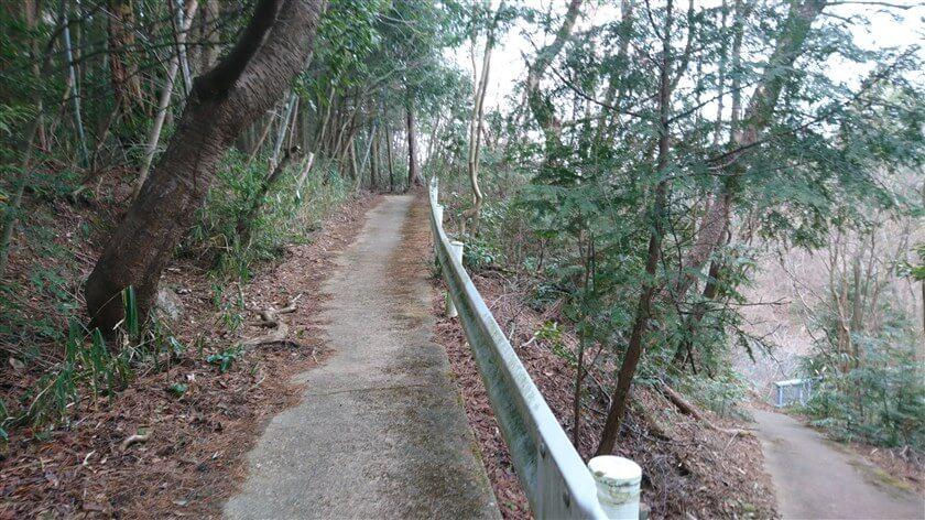 ハイキング道を、のどか村方面に向かう