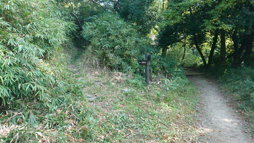 左手のベンチの先に、左「高安山」と書かれた道標があり、【恩智信貴道】への分岐点となっている。10分程登ると展望台があり【絶景のビューポイント】になっている。