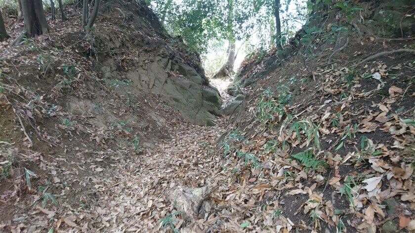 このルートは、岩が露出している箇所が多い