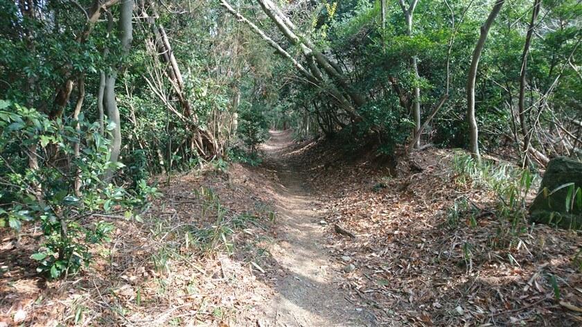 信貴山方面への道の様子