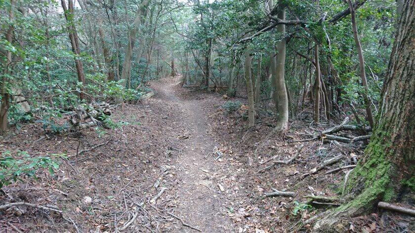 信貴山方面への道は広く、且つ、なだらかなので歩きやすい