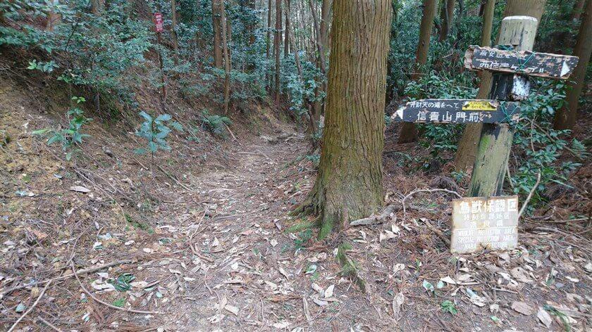「弁財天の瀧」方面への道の様子。右にはボロボロになった「弁財天の滝をへて 信貴山門前」の道標があり、この上に小さく「石ダタミの坂道 すべりやすい 注意」と書かれたテープが貼られている