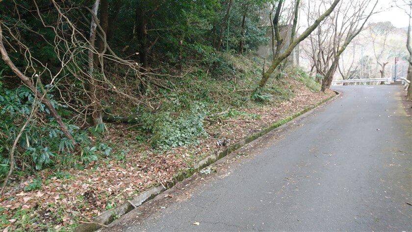 とっくりダムの横の道から、のどか村へのハイキング道に入る