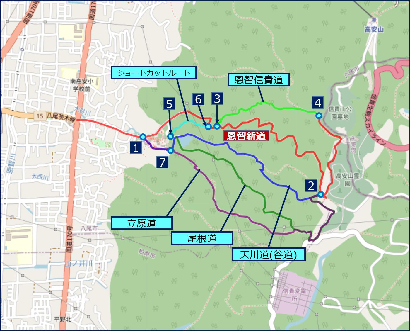 恩智越えのルートには、【恩智新道】と呼ばれる本線(赤色のルート)以外に、4つの【代替裏ルート】と【ショートカット】ルートがある