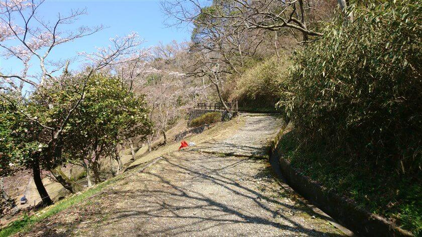 枚岡公園内の道は手入れが行き届いており、「都会のハイキング道」の趣がある