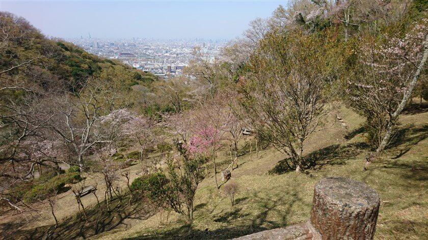 「都会のハイキング道」からの、大阪市街の眺め
