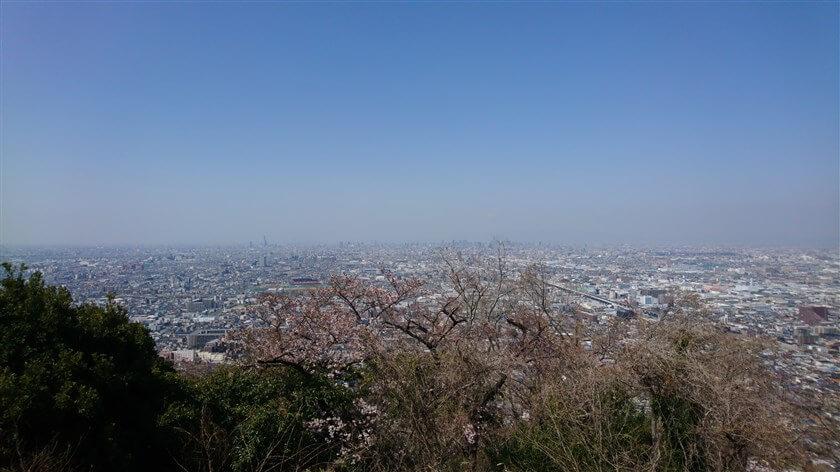額田山展望台からの眺望:西部