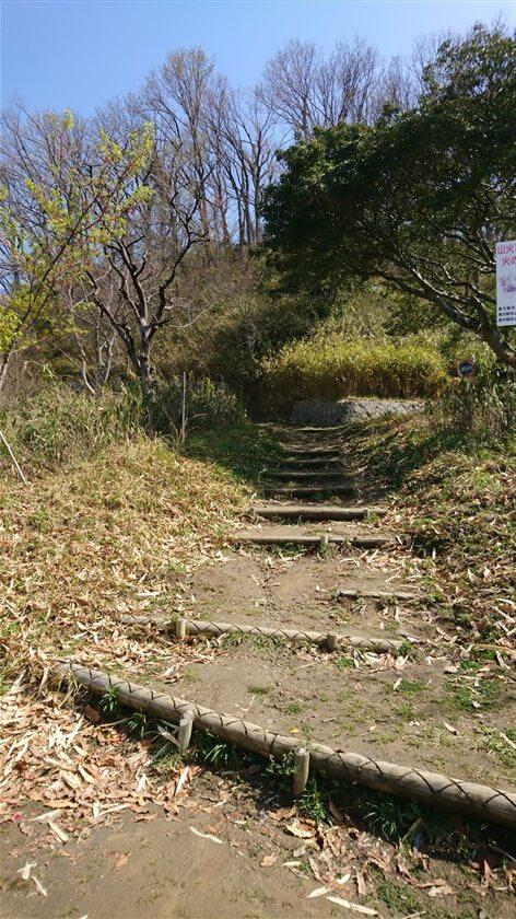 額田山展望台を後にして、左=北方向に進む