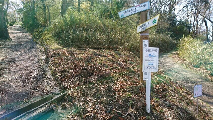 N-15額田展望台北の分岐点の様子。生駒山上・あじさい園方面に向かう。