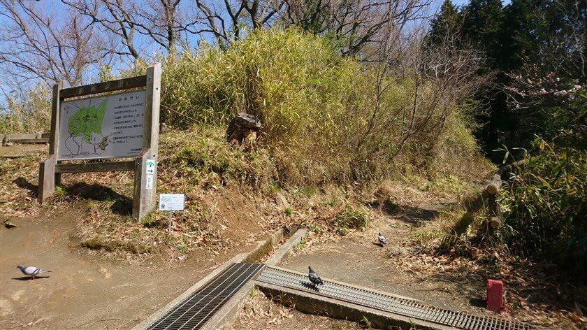 ヒ-37「双子塚」:牧岡公園は、ここまでで、この合流地点から「摂河泉展望コース」が始まる