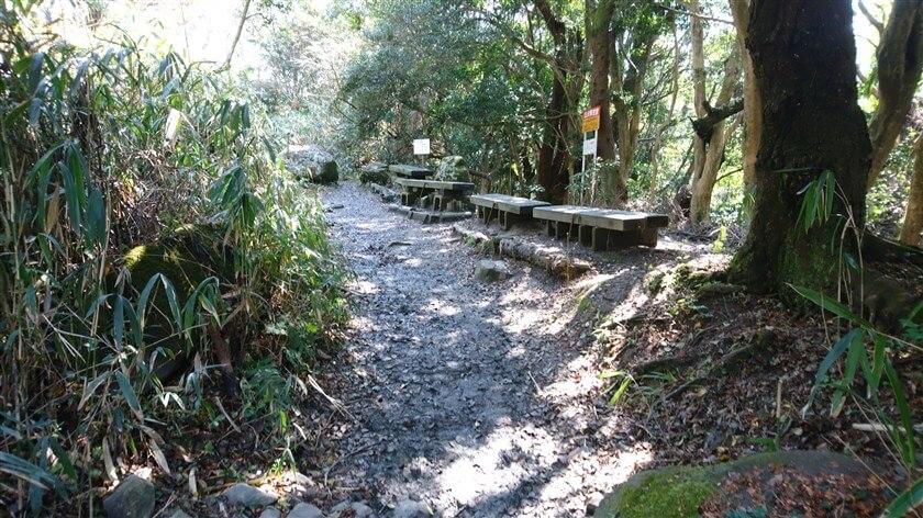 ベンチが並んであり、その奥に大きな岩がある地点に出る