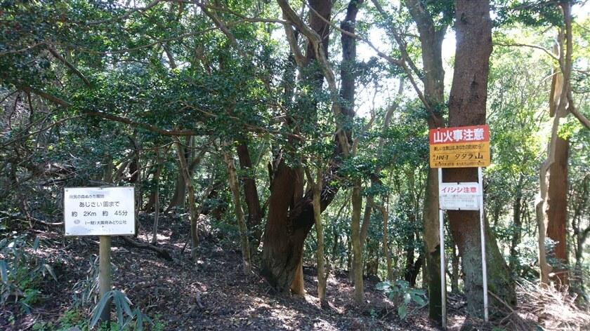 ベンチの奥に「標点H4-1:タタラ山」という標識があり、ここが「タタラ山」の山頂のようだ