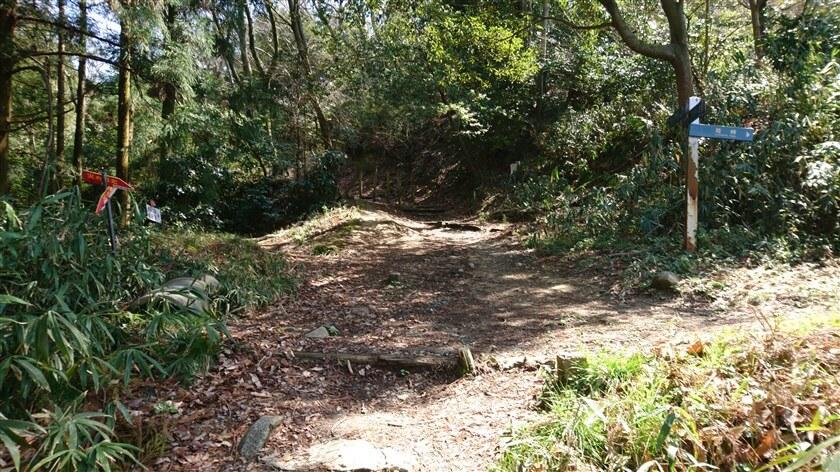左:長尾の滝、右は「暗峠」への分岐点に出る
