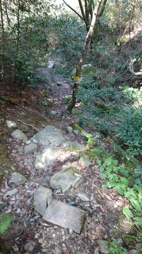 岩がゴロゴロしている急斜面を、渓谷の中に降りる