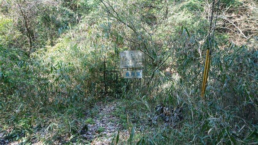「長尾渓」と書かれた看板がある