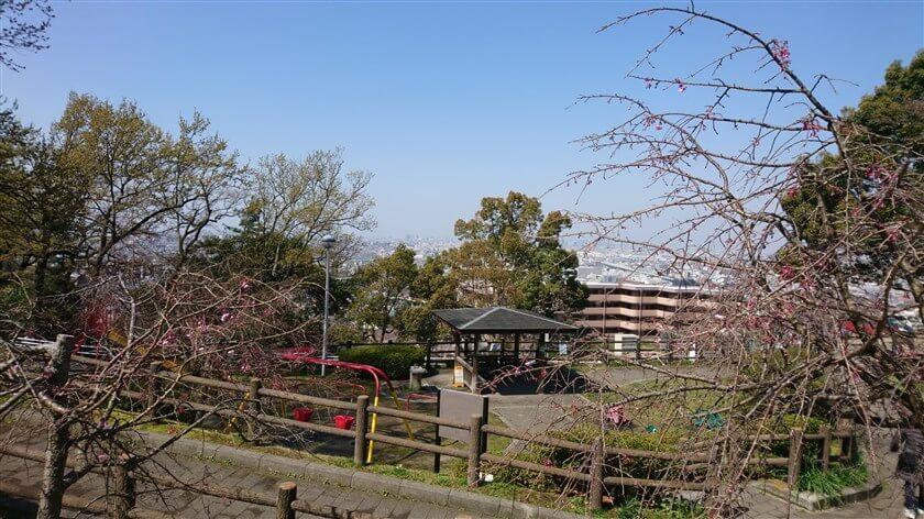 枚岡公園の下は市街地で、ウォーキングに勤しむ人が多い