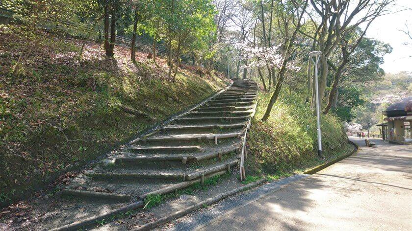 途中にある階段を、左上に登る