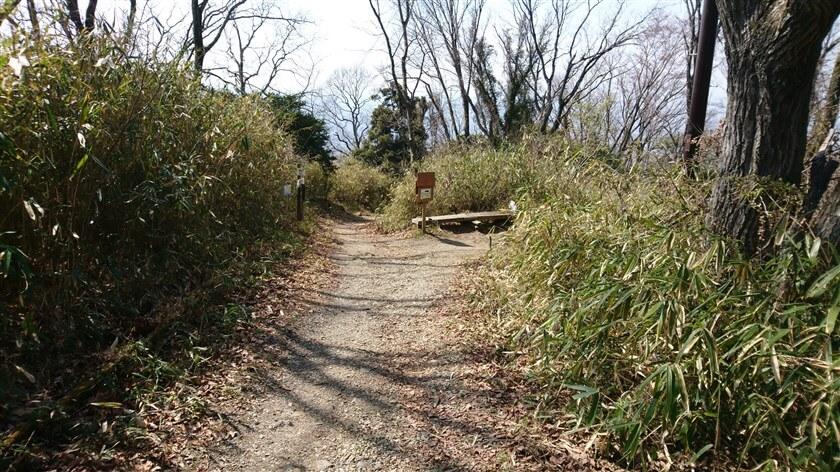 「摂河泉展望コース:せ – 20」。右に行くと「ぬかた園地 あじさい園」に行けるようだ。