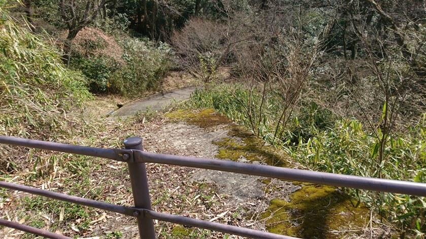 「ぬかた園地の管理道」の上から、左:南方の様子