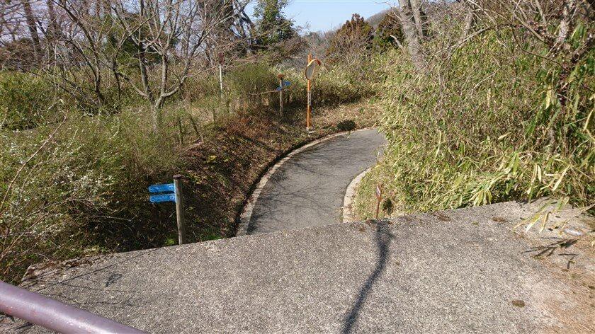 「ぬかた園地の管理道」の上から、右:北方の様子