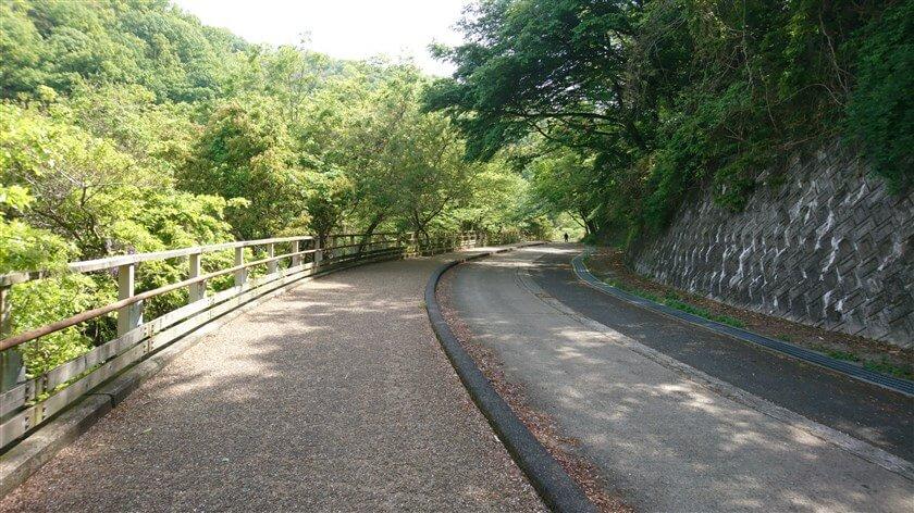 管理道の左側に並走した舗装道があり、これが「らくらく登山道」