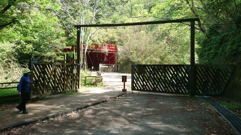 すぐに「なるかわ谷コース」を横切る地点に到着し、赤いトンネルが見えてくる