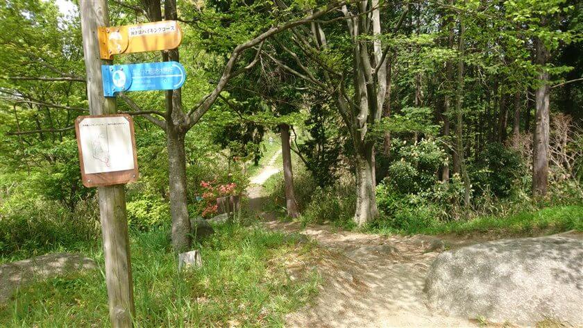 「神津嶽コース」から登ってくる道の様子
