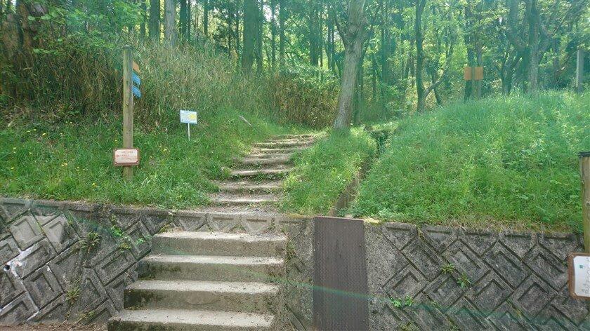 神津嶽休憩所から、「神津嶽コース」を登る道の様子