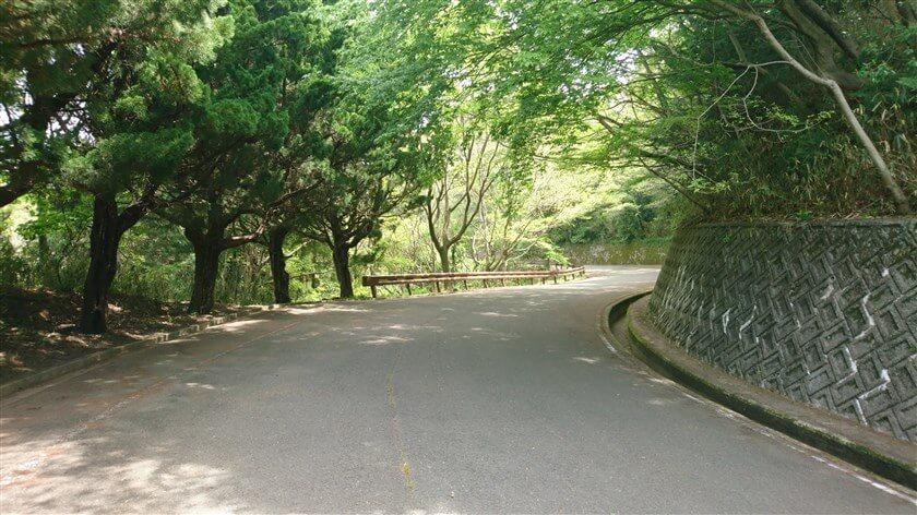 管理道を行く。神津嶽休憩所から先は並走路が無くなり、「らくらく登山道」は終わっている。