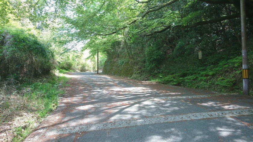管理道ではあるが、一般道(地域の生活道)でもあり車の通行がある