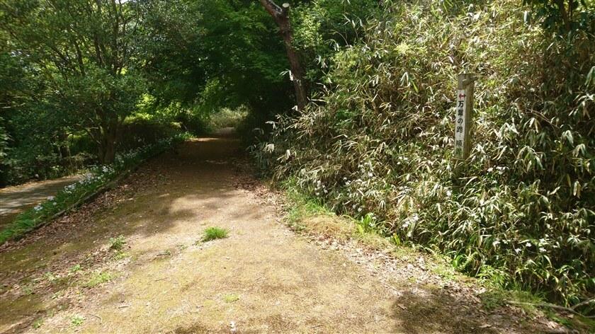 左手に、「万葉の路」への標識がある。ここを登っても、生駒縦走歩道に出る。