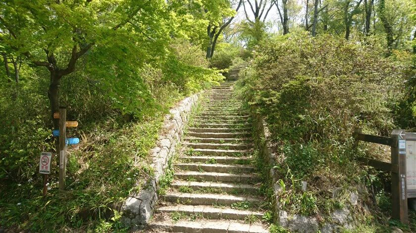 なるかわ園地休憩所の山側に、「ぼくらの広場」に登る「神津嶽コース」がある
