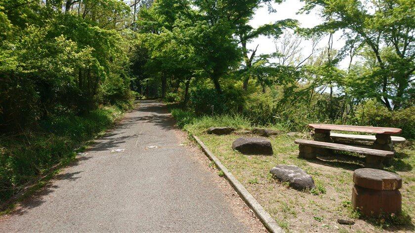 なるかわ園地休憩所前の管理道を、南に向かう道の様子