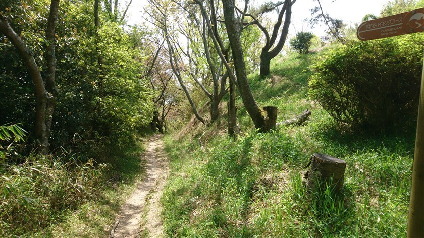 【旗立山】を降りて、「客坊谷コース」を行く