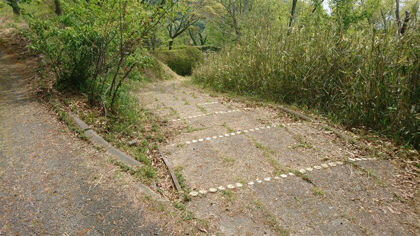 「つつじ園」へのショートカット入り口。ここを下ると、「つつじ園」を鳥瞰することが出来ない。