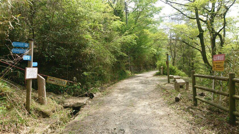 つづら折りの道を下って行くと、「なるかわ谷コース」の枝道である、イシダタミの路への分岐点が現れる
