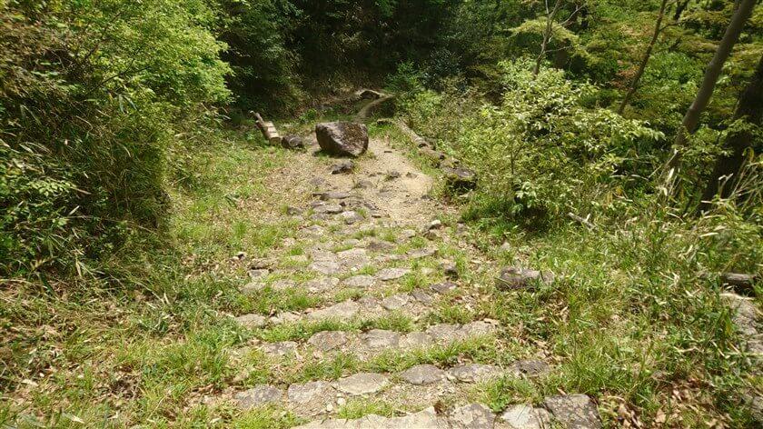 【イシダタミ】というより、石ころゴロゴロの道