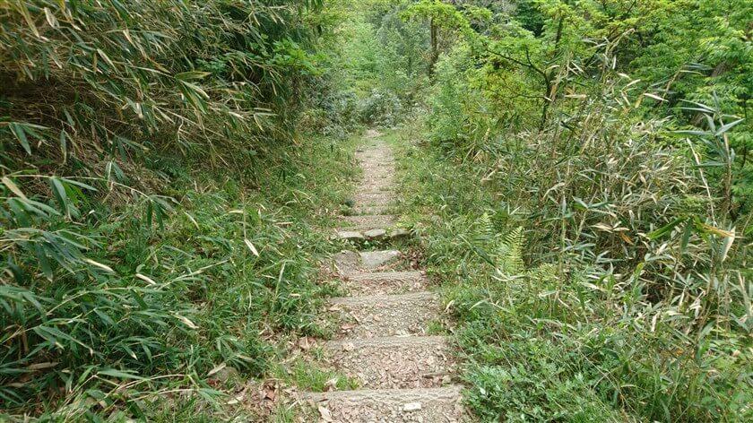 階段になった道を下るも、歩幅が合わず歩きにくい