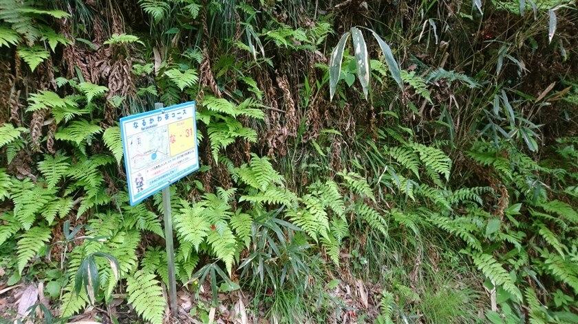 「なるかわ谷コース」の位置標示標識板「な - 31」