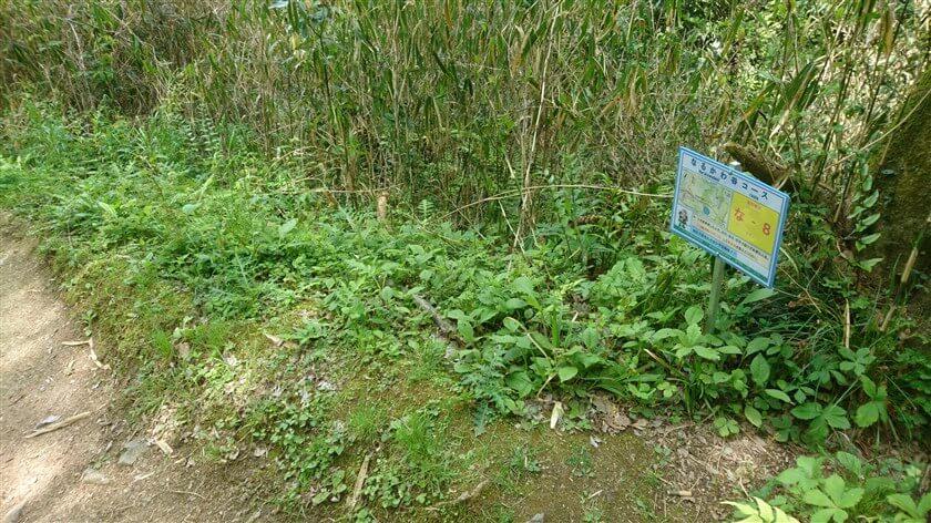 「なるかわ谷コース」の位置標示標識板「な - 8」