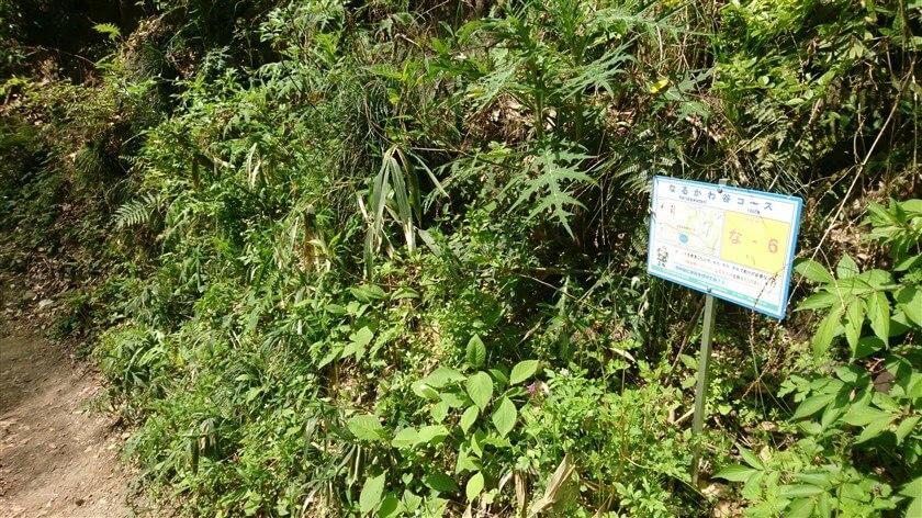 「なるかわ谷コース」の位置標示標識板「な - 6」