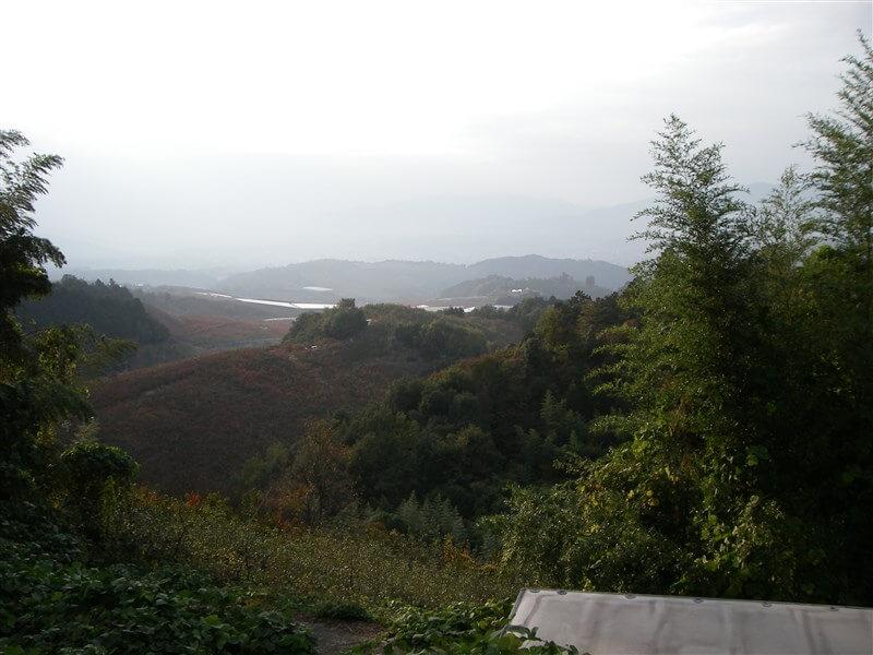 西北西に吉野川が見える