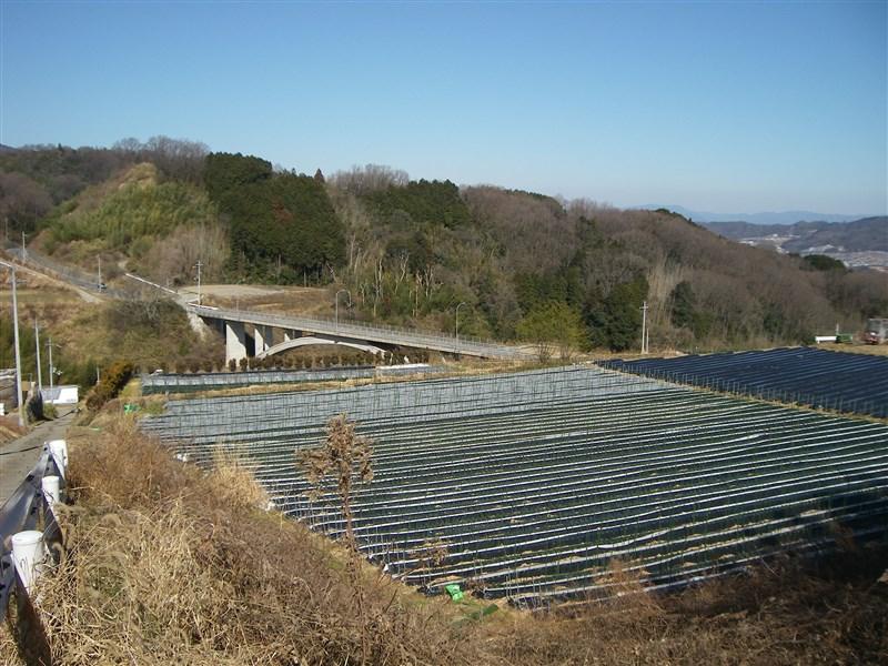 奈良県側への下り。信貴フラワーロードが見える